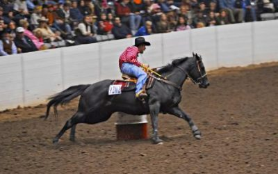 All-American Quarter Horse Congress